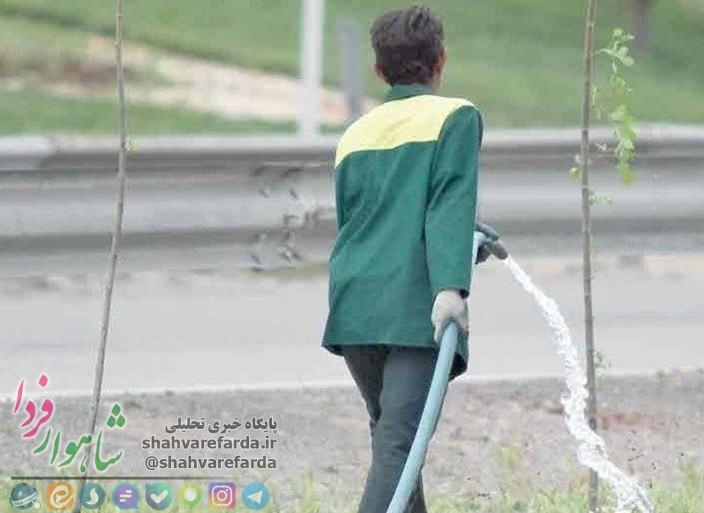 Photo of ماه ها حقوق و مزیای کارگران شرکتی فضای سبز شهرداری شاهرود عقب افتاده است / شهردار خدوم به داد کارگران برسد
