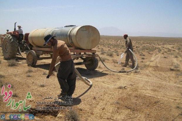 Photo of ۳۰۰ هکتار تاغ کاری در روستای دستجرد بیارجمند شاهرود اجرا میشود