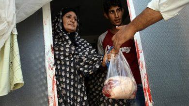 Photo of ۲۰ میلیون ریال گوشت نذری و اطعام بین نیازمندان توزیع شد