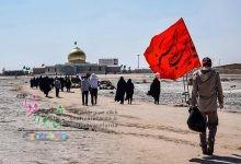 Photo of ۲۳۰ هزار پسر و دختر از اقصی نقاط ایران اسلامی در اردوهای راهیان نور شرکت کردند