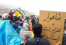 Photo of ثبت ملی شاهوار مطالبه مردمی/ فقر آب شاهرود جدی گرفته شود